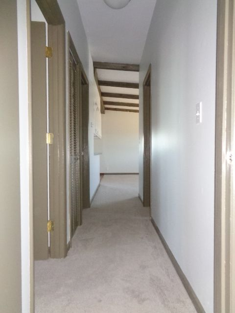 Hall way includes a large linen closet with full louver door.