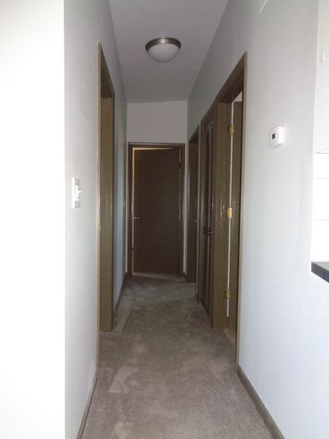 Hallway includes a large linen closet with full louver door.